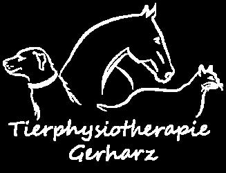 Physiotherapie und Osteopathie